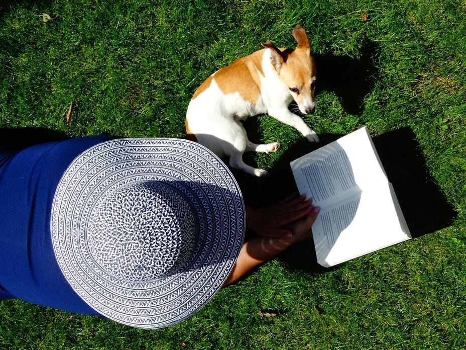 dog-training-books