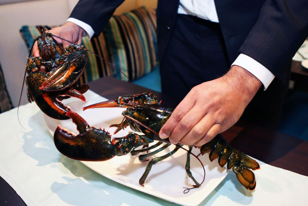 how-do-lobsters-communicate-with-each-other